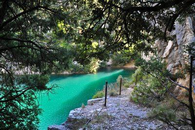 Sentier au bord du lac d'Esparron
