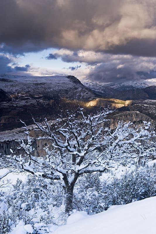 Un magnifique panorama hivernal