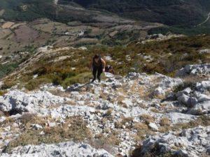 Ascension du Mont Robion Arrête ouest