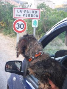 Vacances dans le Verdon avec mon chien